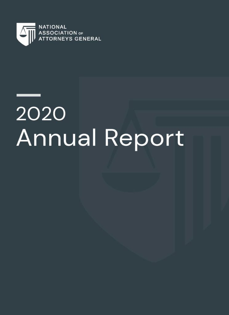 cover page for the 2020 annual report
